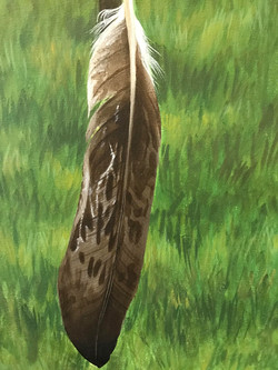 Eagle Feather Detail