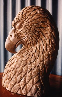 1 Spirit of the Eagle