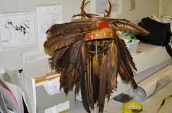 Tecumseh Headdress
