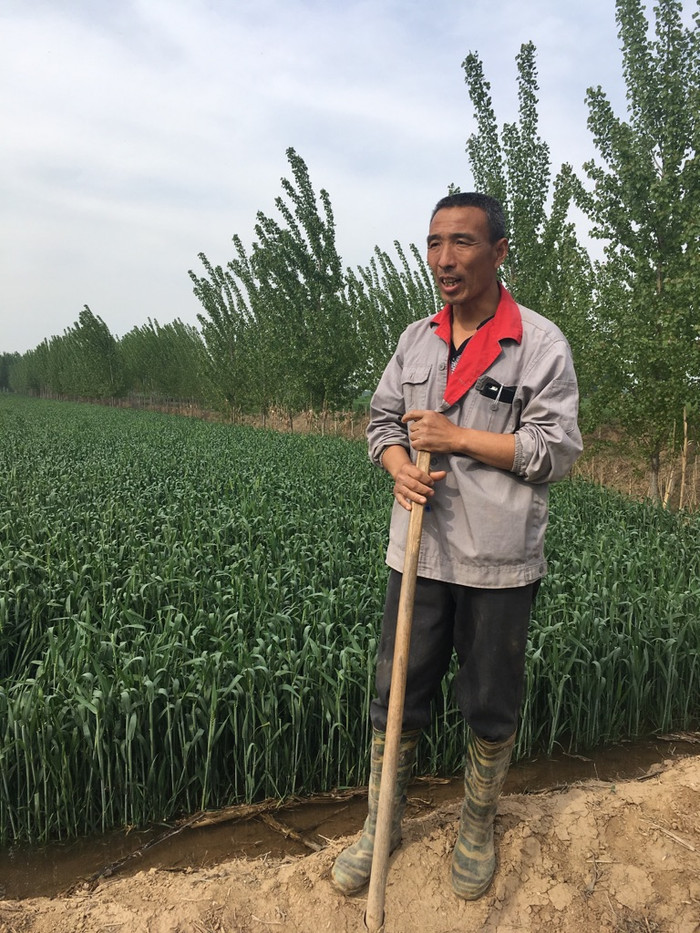 Irrigating Chinese Style