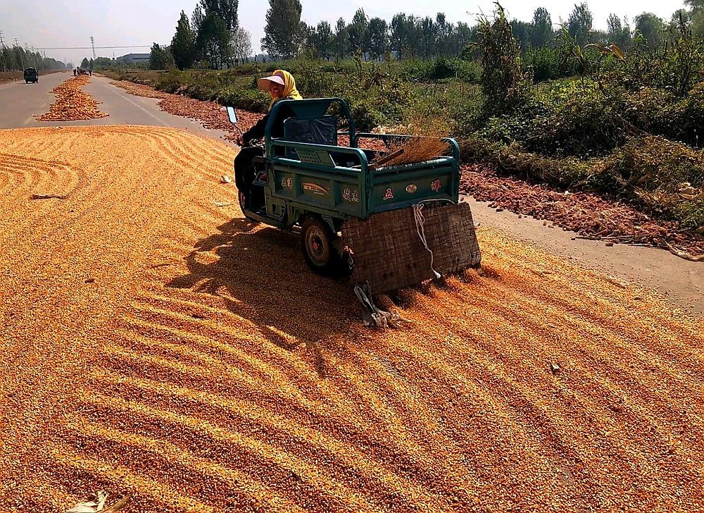 Turning the corn