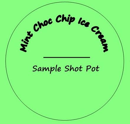 24g Mint Choc Chip Ice Cream Shot Pot