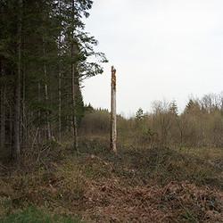 morvan018
