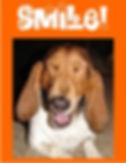 Fridge Magnet with dog smiling