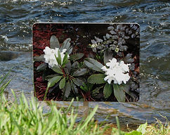 Garden Art with flowers by the river