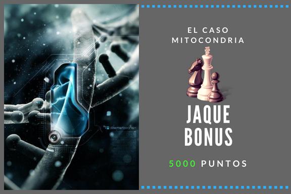 JAQUE BONUS