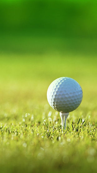 18-180399_golf-for-lg-nexus-hd-andro-and