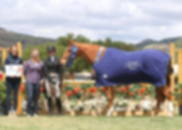 Hunter/Jumper Trainer, Bravado Farms, San Diego horse trainer