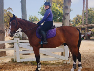 A new partnership in the Jumper Ring!