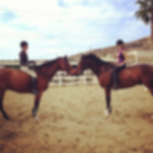 San Diego horse training, San Diego riding school, horseback riding lessons, learn how to ride, hunter/jumper training stable, hunter/jumper trainer, Bravado Farms, Tara Bemoll, Del Mar, Showpark, Del Mar horsepark