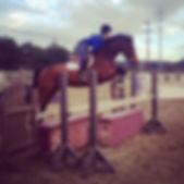 Bravado Farms, San Diego Hunter/Jumper training, horse sales, horseback riding lessons, lesson horses, Horse training