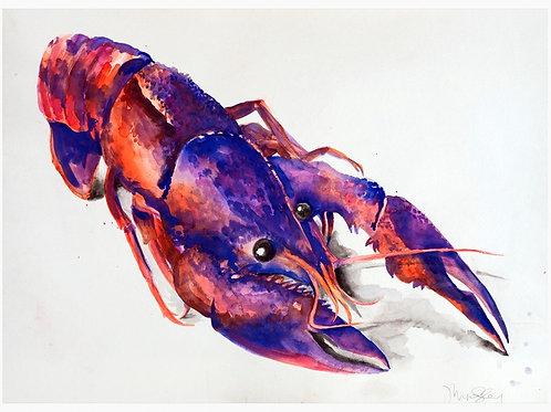 """19""""x 22"""" Crawfish"""