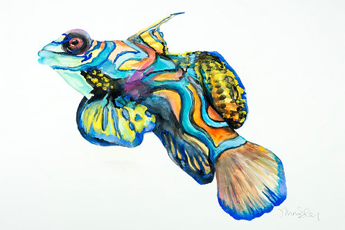"19""x 22"" Gobie Fish"