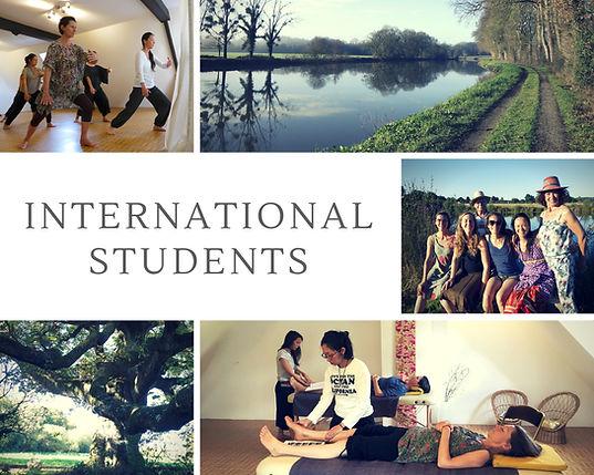 collage international.jpg