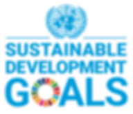DG logo with UN Emblem_Square_Web_transp