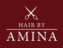 Hair by Amina Logo WEB-01 copy.jpg