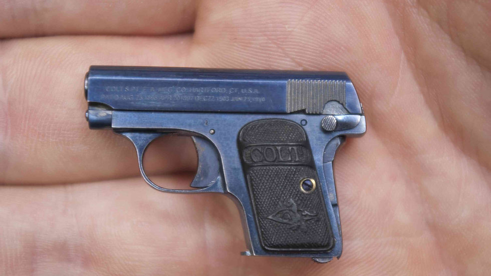 Colt 25, Blued