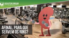 Afinal, para que servem os rins?