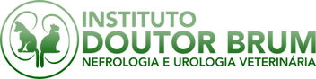 Logo2019HorizPositivo.png