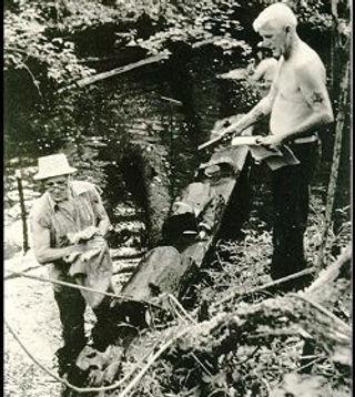 Hewitt Sawmill.jpg