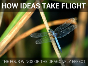 How Ideas Take Flight: The Dragonfly Effect