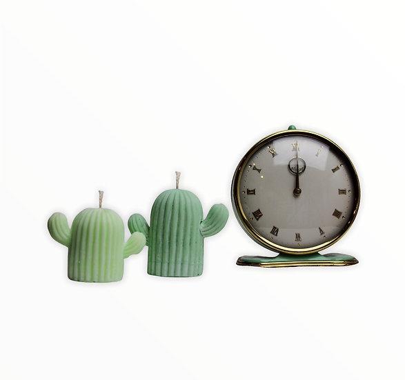 Cacti Duo