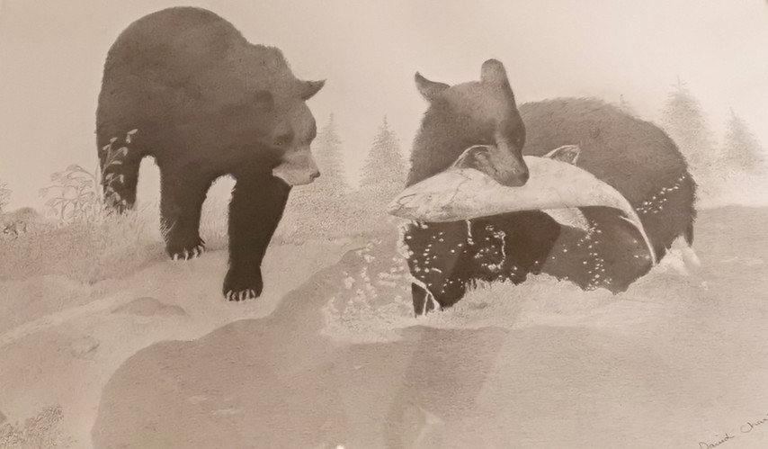 Black Bears Fishing.