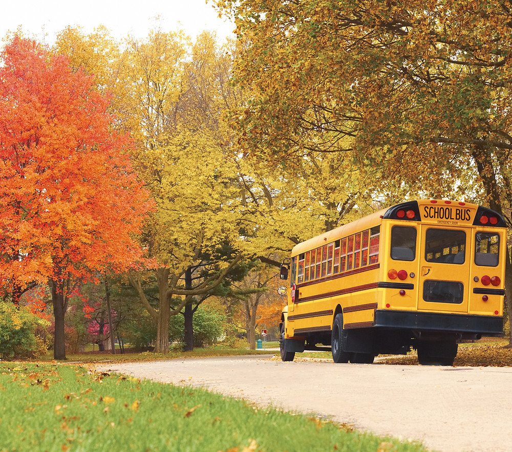 School bus, back-to-school for kids, and you? Back-to-work?