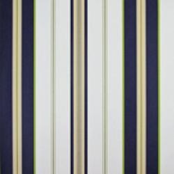 Classic Stripes - CT889066