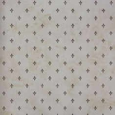 Catálogo- FRAGRANT ROSES -REF: FA811042