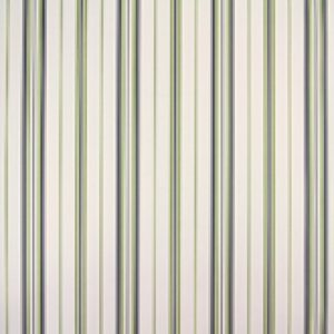 Classic Stripes - CT889049