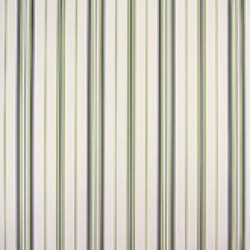 Classic Stripes - CT889049