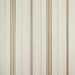 Classic Stripes - CT889088