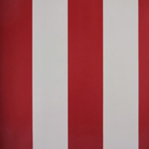 Classic Stripes - CT889060