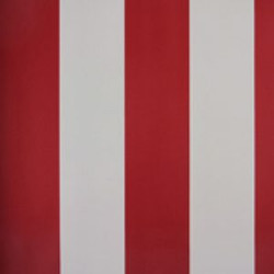 Classic Stripes - CT889060