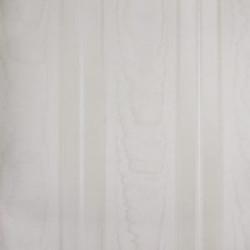 Classic Stripes - CT889110