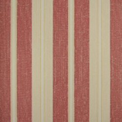Classic Stripes - CT889084