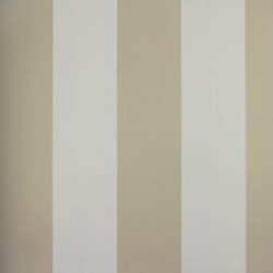 Classic Stripes - CT889061