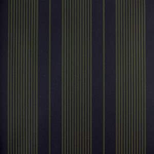 Classic Stripes - CT889044