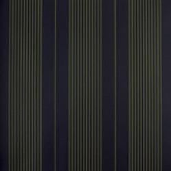 Classic Stripes - CT889044