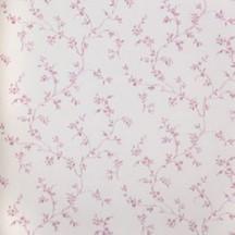 Catálogo- FRAGRANT ROSES -REF: FA811070