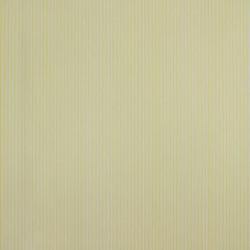 Classic Stripes - CT889028