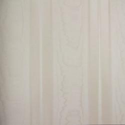 Classic Stripes - CT889109