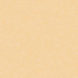 Catálogo – Rainbow Sugar - REF: F5-5001
