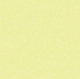 Catálogo – Rainbow Sugar - REF: F5-5003