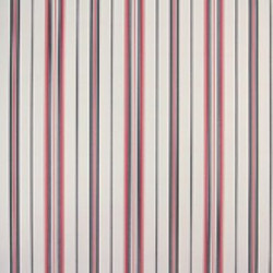 Classic Stripes - CT889048