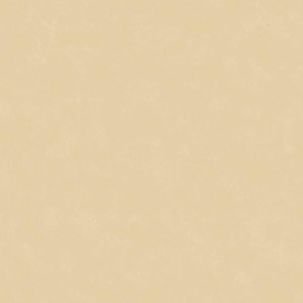 Catálogo- FREESTYLE -REF_ 8699GV