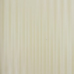 Classic Stripes - CT889070