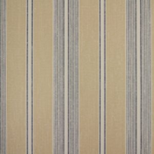 Classic Stripes - CT889086