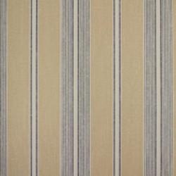 Classic Stripes - CT889086
